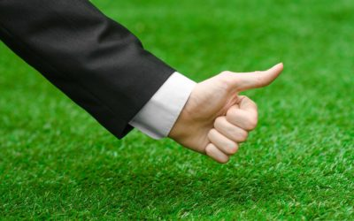 Give Your Lawn the Home Field Advantage